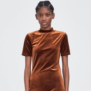 Zara Trafaluc Velvet Mock Neck Dress